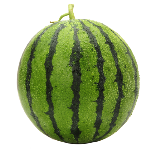 Melon image